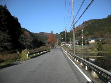 前日光サイクリング その1(大荷場木浦沢林道)6