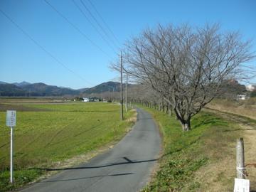 奥武蔵サイクリング その1(笛吹峠~武蔵嵐山~小川町)3