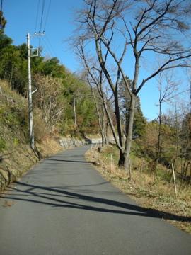 奥武蔵サイクリング その2(林道栗山線)10