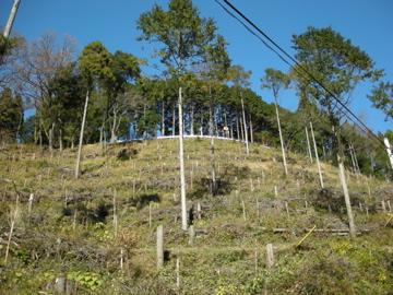 奥武蔵サイクリング その2(林道栗山線)1