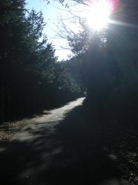 奥武蔵サイクリング その2(林道栗山線)7