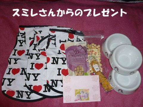 present_20091231_1