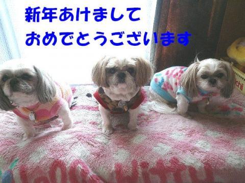 oyako_20100101_1