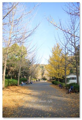 南郷公園,葉山