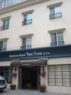 tea#50526;-2