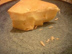 うじ虫チーズ