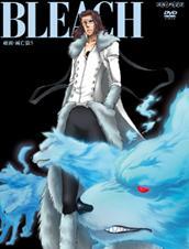 Bleach10.jpg