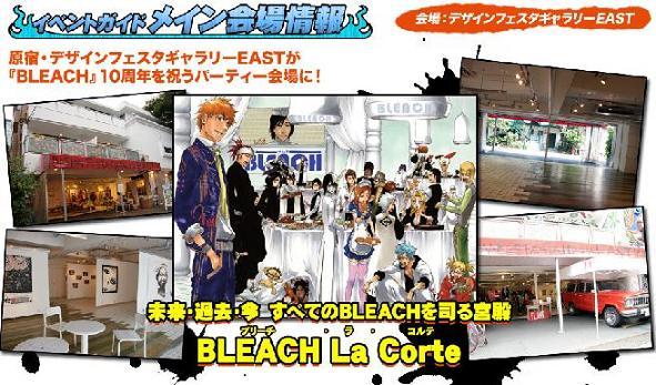 Bleach48.jpg