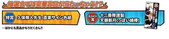 Bleach51.jpg