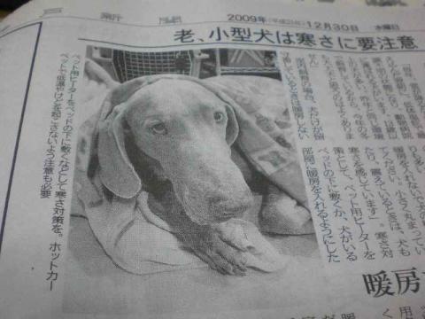 新聞ワイマ