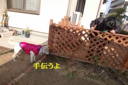 CIMG9793_convert_20110125105716.jpg