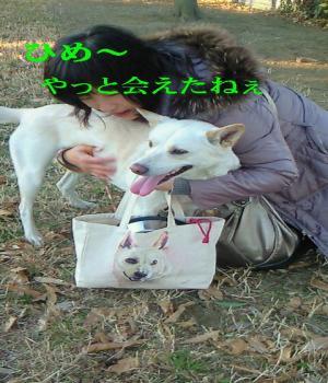 NEC_0793_convert_20110113074201.jpg