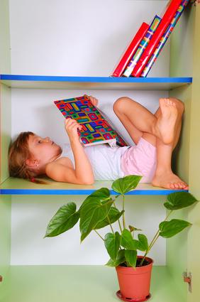 本棚ベッド