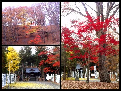 2013-11-06 15_Fotor_Collage3_Fotor