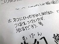 R0036934.jpg