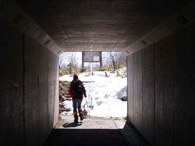 20100414トンネル