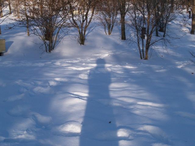 20100509冬