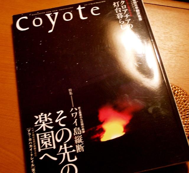 20100515coyote.jpg