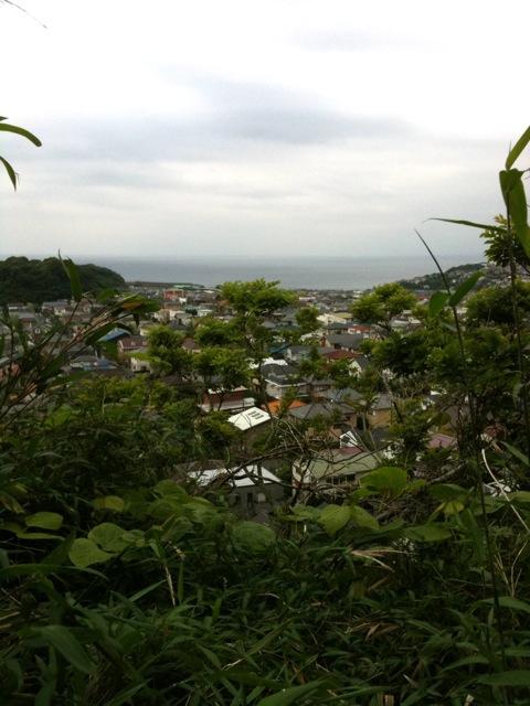 20100530極楽寺ハイキング2