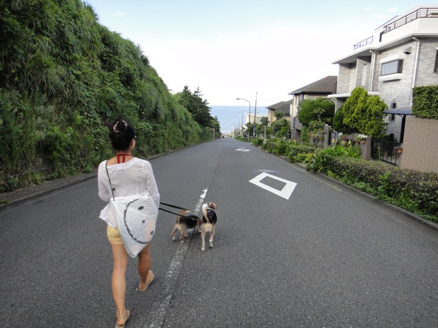 20100809shitiri1.jpg