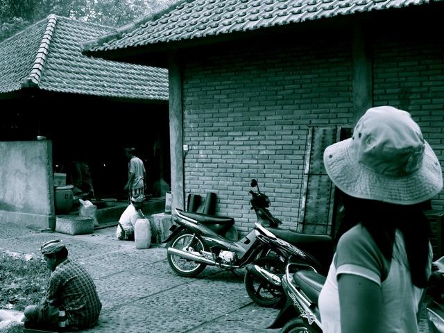 20100821monkyforest.jpg
