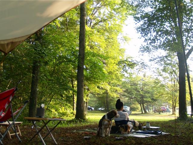 20100825summercamp1.jpg