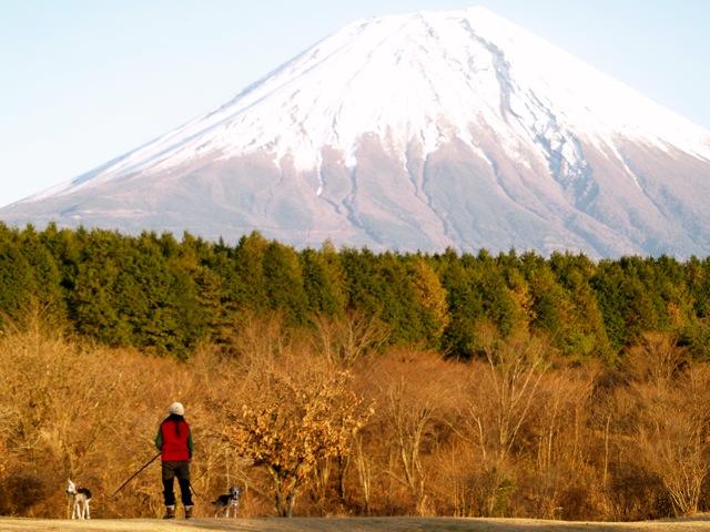 20101207asagiri1.jpg