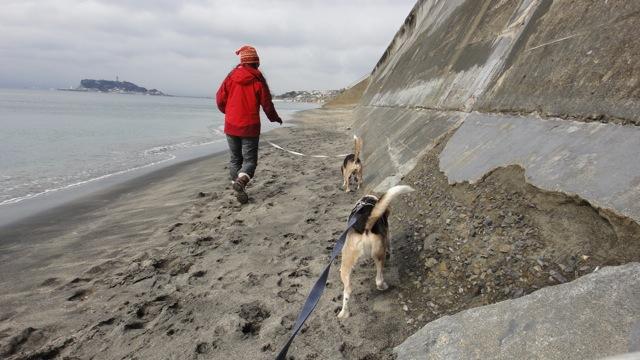 20110214_beach1.jpg