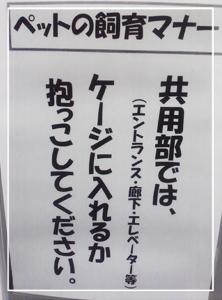 張り紙02