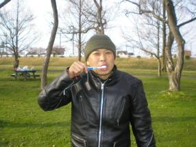 37歯磨き