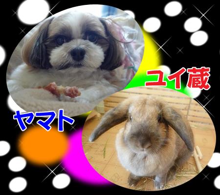 09_1230_01.jpg