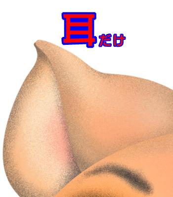 10_0112_05.jpg