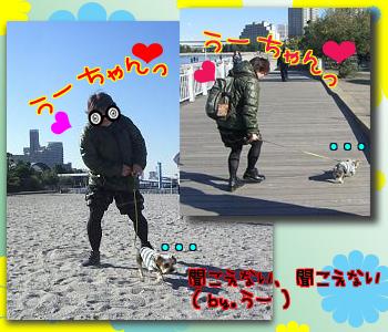 10_0114_05.jpg