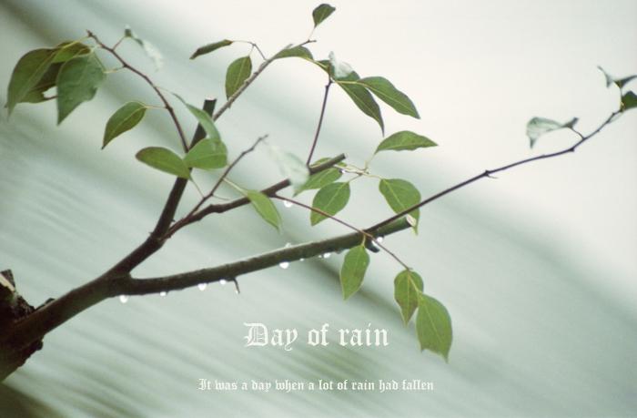 Day of rain2