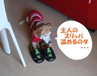 09_09_20_02.jpg