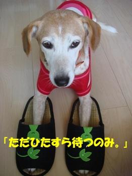 09_09_20_03.jpg
