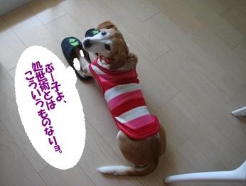 09_09_20_04.jpg