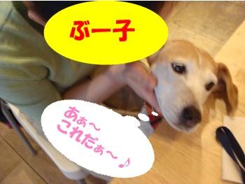 09_09_20_08.jpg