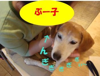 09_09_20_09.jpg