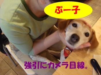 09_09_20_10_.jpg