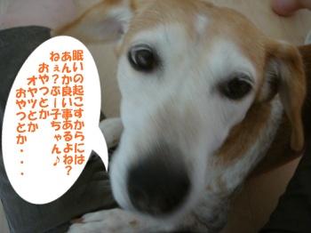 10_09_10_04.jpg