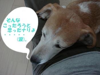 10_09_10_05_.jpg
