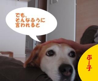 10_09_10_06.jpg