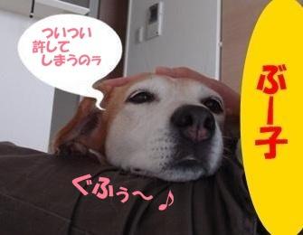 10_09_10_07_.jpg