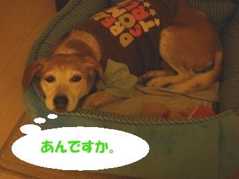 10_09_10_09.jpg