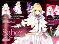 「FateエクストラCCC」雑誌情報 ファミ通&電撃   (3)