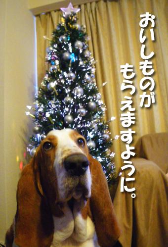 12_christmas01.jpg