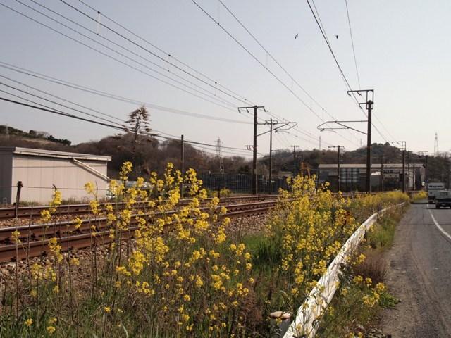 P3304117.jpg