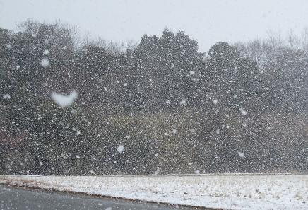 201002062積雪記念