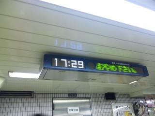 SH381905.jpg